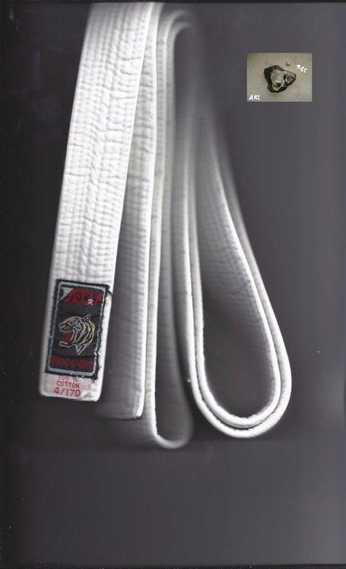 Budogürtel ,Judo, Karate, Taekwondo, Ju Jutsu, Gürtel, weiß