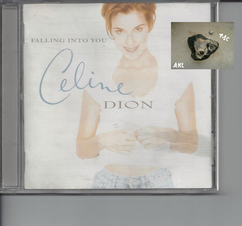 Celine Dion, Falling into you, CD