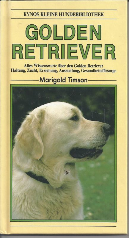 Golden Retriever, Marigold Timson