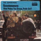 Bild zu Sandpipers, The -...