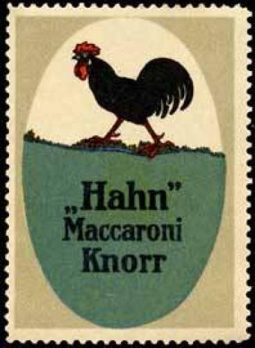 Hahn Makkaroni - Nudeln