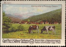 Günterstal bei Freiburg
