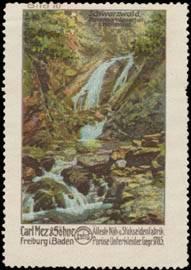 Ravenna Wasserfall im Höllental vom Schwarzwald
