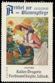 Artikel zur Blumenpflege