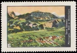 Meiringen Well- und Wetterhorn