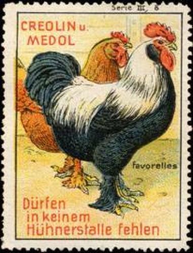 Creolin und Medol Favorelles für Hühner