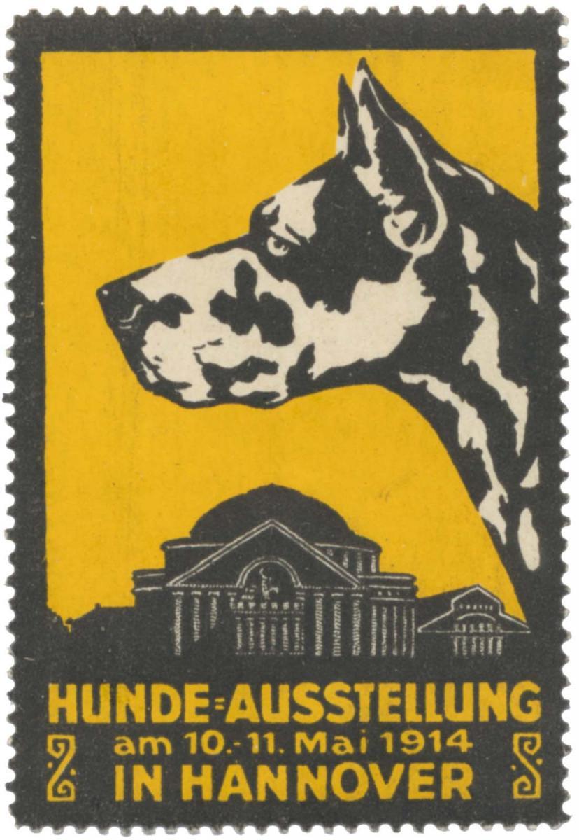 Dogge - Hunde-Ausstellung
