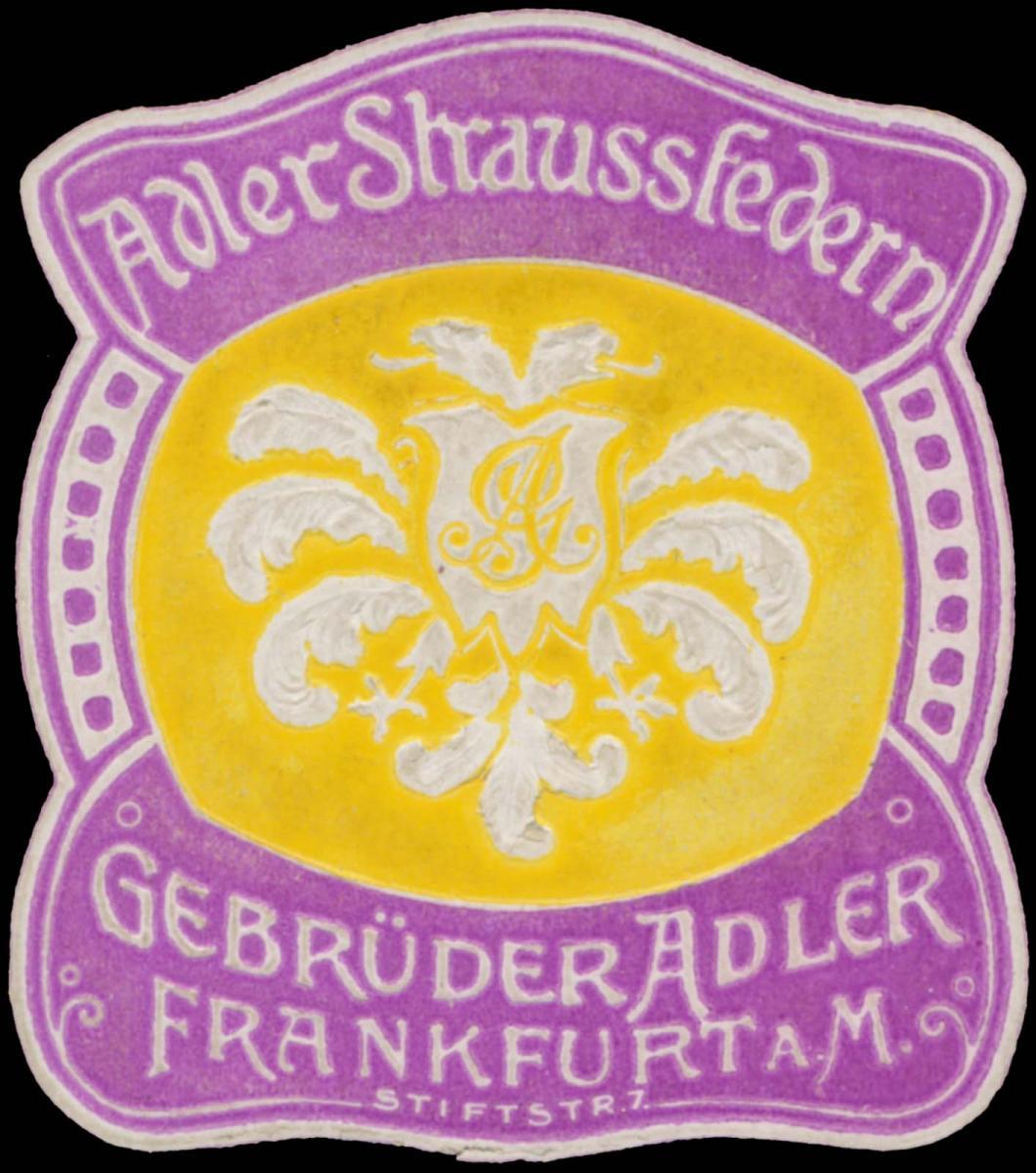 Adler Straussfedern