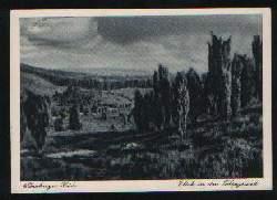 x01738; Lüneburger Heide. Blick in den Totengrund.