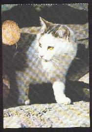 x02613; Katze.