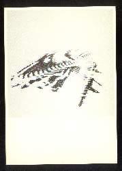 x03052; Hans Friedrich. Verletzung der Landschaft, Spuren.