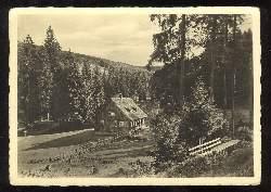 x03551; Haus im Wald. Rückseite mit Werbung für Ansichtskarten.