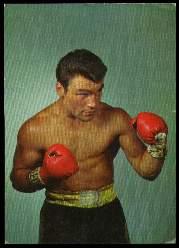 x13416; Boxer.