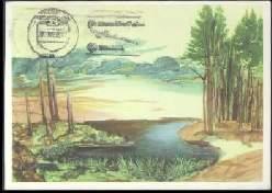 x14257; ALBRECHT DÜRER: Weiher im Wald.