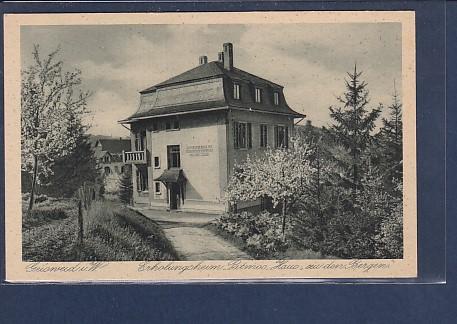 AK Geisweid Erholungsheim Patmos Haus zu den Bergen 1930