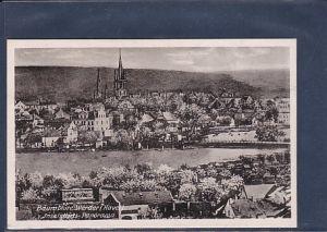AK Baumblüte Werder ( Havel) Inselstadt Panorama 1950