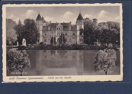 AK Groß Dammer ( Grenzmark) Schloß von der Seeseite 1942
