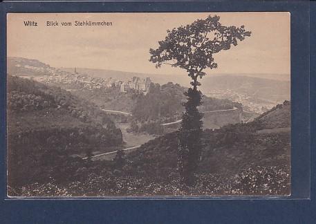 AK Wiltz Blick vom Stehkämmchen 1920 0