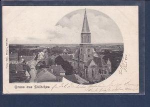 AK Gruss aus Züllichau 1901
