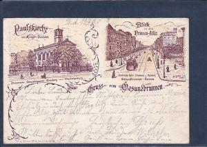 AK Gruss vom Gesundbrunnen 2.Ansichten Blick in die Prinzen Allee 1898