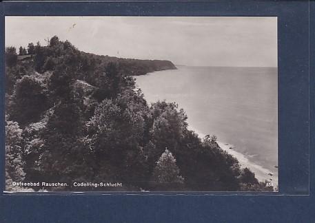 AK Ostseebad Rauschen Codolling-Schlucht 1930