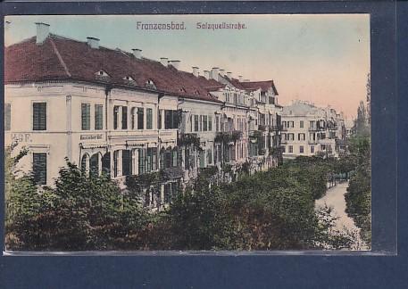 AK Franzensbad Salzquellstraße 1920