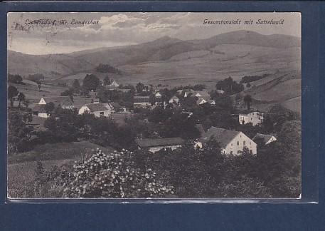AK Liebersdorf Kr. Landeshut Gesamtansicht mit Sattelwald 1929