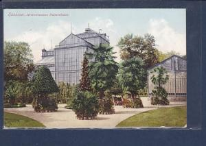 AK Hannover Herrenhausen Palmenhaus 1910