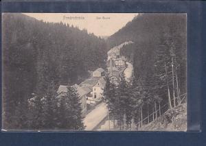 AK Friedrichroda Der Grund 1906