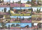 Bild zu 92056 - L�neburge...