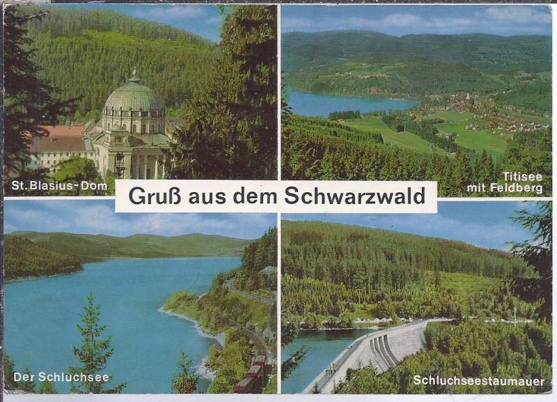 Hoki-A-5  Gruss aus dem Schwarzwald , Mehrbild (4)