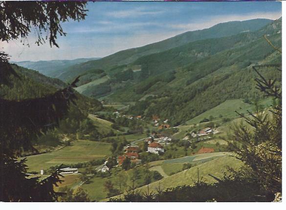 79750 Obersimonswald Schwarzwald, Blick ins Simonswälder Tal
