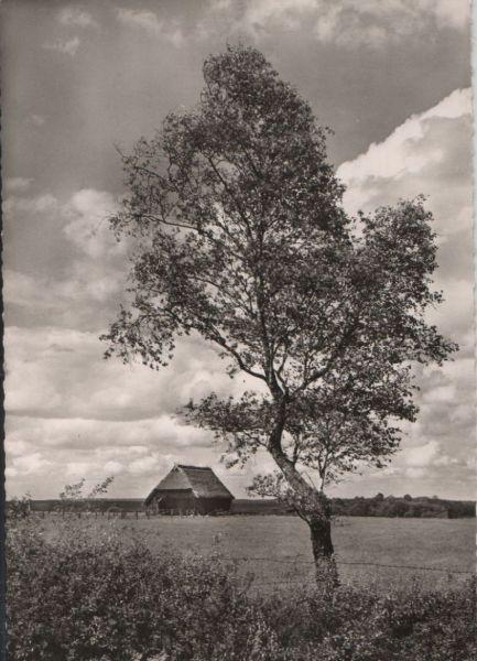 Ein frohes Osterfest - ca. 1955