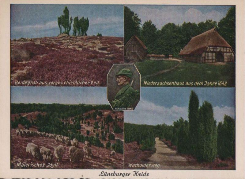 Lüneburger Heide - u.a. Wacholderweg - ca. 1960