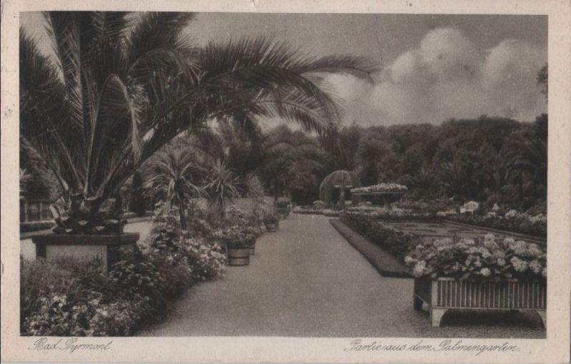 Bad Pyrmont - Partie aus dem Palmengarten - 1927 0