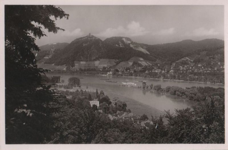 Drachenfels - Blick über den Rhein - ca. 1955