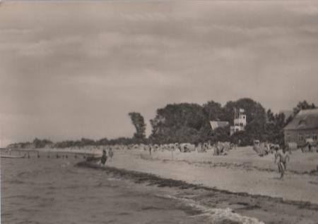 Insel Poel - Schwarzer Busch - 1967