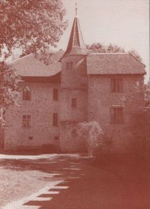Schweiz - Schweiz - Seengen, Schloss Hallwyl - vorderes Haus - 1996