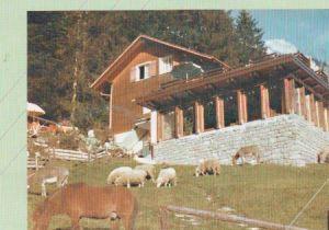 Schweiz - Schweiz - Restaurant Maiensäss, Oberschan - ca. 1980