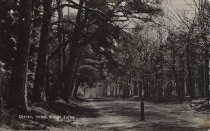 Niederlande - Niederlande - Rheden-Dieren - Imbos, Lange Juffer - 1959