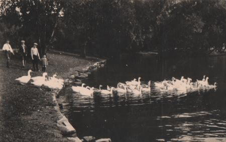 Niederlande - Niederlande - Groningen - Noorderplantsoen - ca. 1935