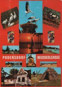 Österreich - Österreich - Podersdorf am See - mit 13 Bildern - 1981