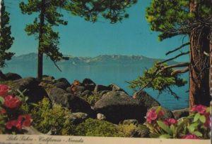 USA - USA - Lake Tahoe - 1981