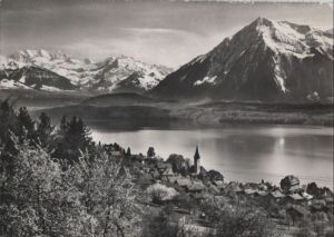 Schweiz - Schweiz - Hilterfingen - Blümlisalp-Niesen - 1961