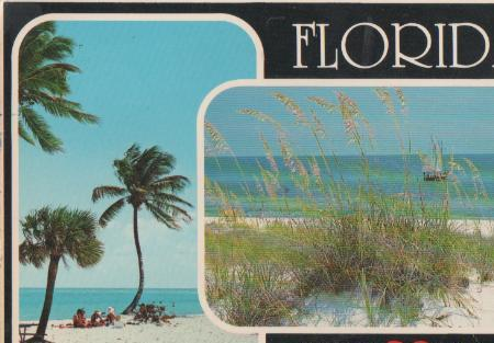 USA - USA, Florida - Sunshine state - 1995