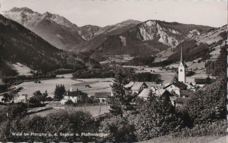 Österreich - Österreich - Wald im Pinzgau - g.d. Seekar - ca. 1960