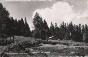 Österreich - Österreich - Steinach am Brenner - Liftrestaurant Bergeralm - 1964