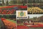 Bild zu Niederlande - Nie...