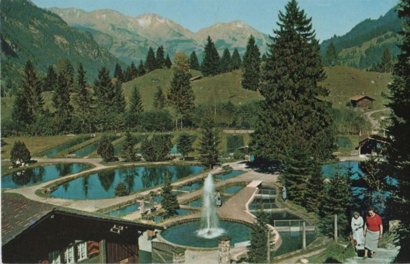 blausee schweiz alpine forellenzucht 0 berner oberland