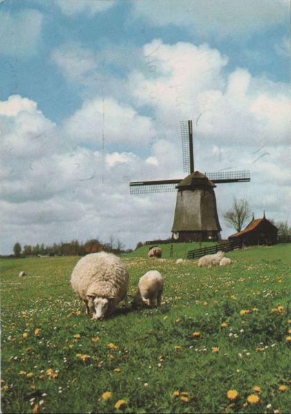 Niederlande - Niederlande - Alkmaar-Schermerhorn - Mühle - ca. 1985